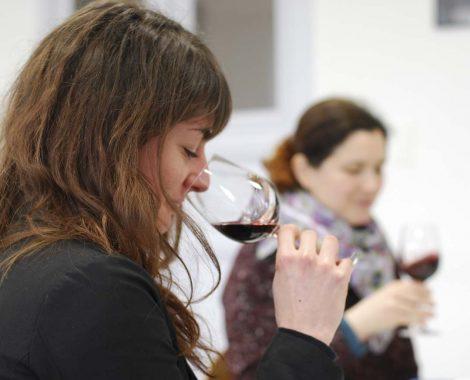degustation vin bourg